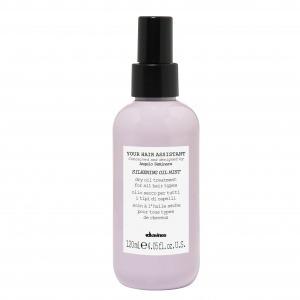 Сухое масло для придания волосам шелковистости Your Hair Assistant